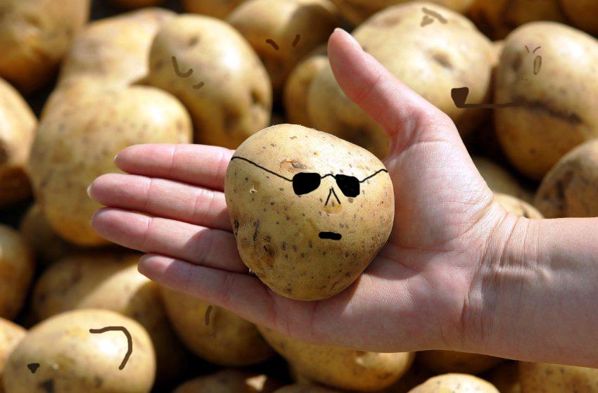 Kartoffelkartell