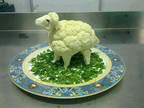 Fastenspeise mit Perspektive: Spätestens an Ostern kommt das Lamm auf den Tisch. – Quelle: Perspective Pictures
